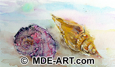 Watercolor painting of seashells