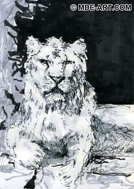 drawing-of-lion-pen.jpg (456×642)