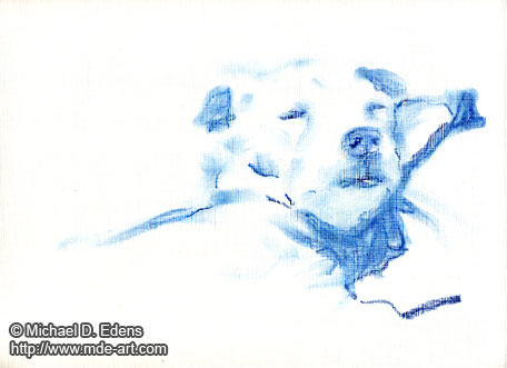Drawing of a Sleeping Dog