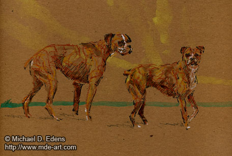 Drawing of Two Dogs - Boxers