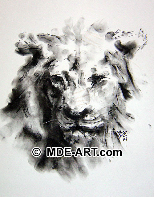 Charcoal Lion Drawing